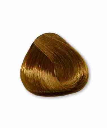 Tinta Magicolor Biondo Chiaro Dorato 83 100 Ml Hair Beauty Shop