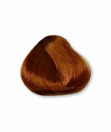 Tinta Magicolor Biondo Chiaro Rame Dorato 843 100 Ml Hair Beauty Shop